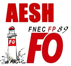 Réunion d'Information Syndicale Spéciale AESH
